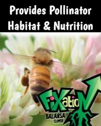 Fixation Pollinator Habitat