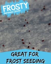 FROSTY Frost Seeding