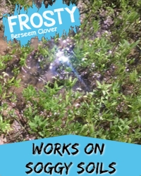 FROSTY Soggy Soils