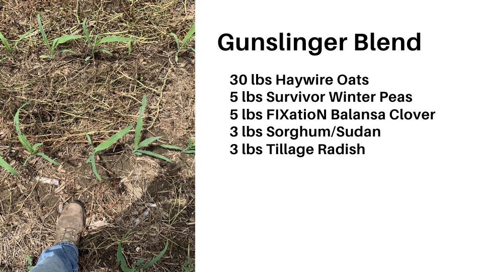 Gunslinger Blend