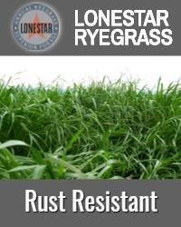 Lonestar Rust Resistant