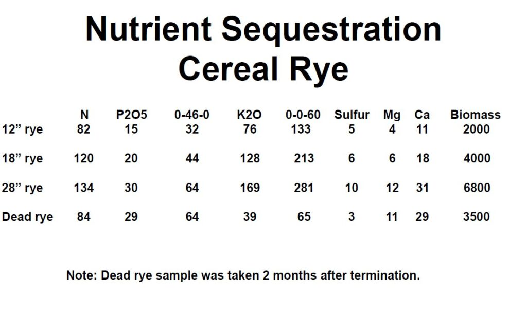 nutrient sequestration cereal rye
