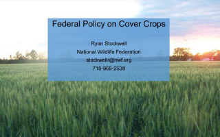 federal policy on cover crops