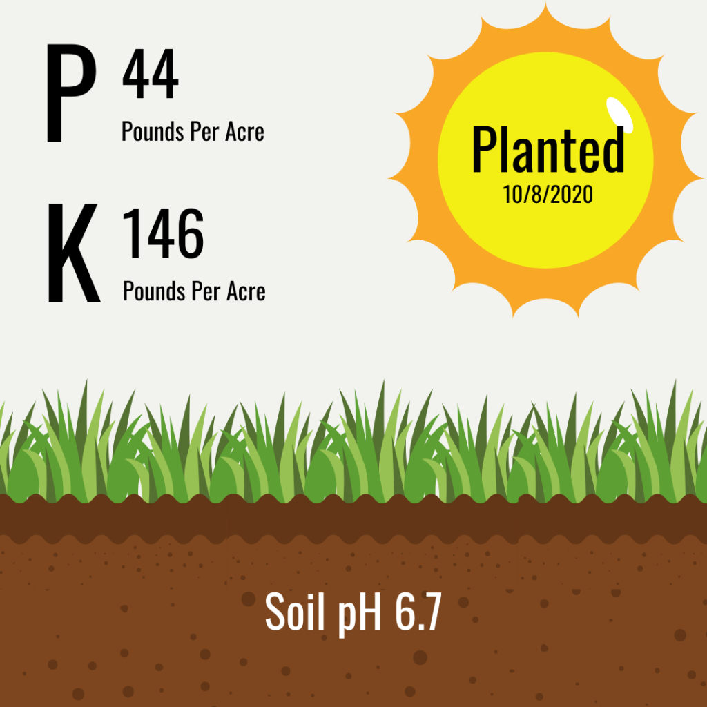 Fertilizer P & K soil test recommendations